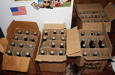 Gonzo checks the finished product.  I got 53 22oz bottles.  They now need to sit at room temp for at least a week to carbonate.