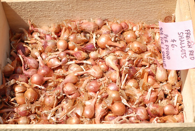 FarmersMarket_20070802_0025