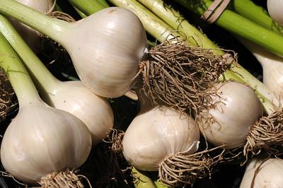 FarmersMarket_20080710_012_pp