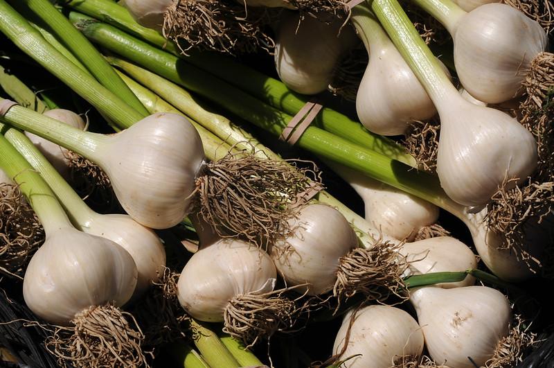 FarmersMarket_20080710_011_pp