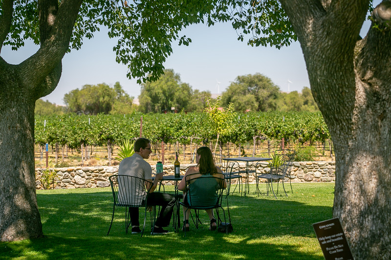 Livermore Wine Tasting Rooms