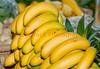 110212 - 7761 Bananas - Farmers Market -  Coral Gables, FL