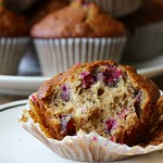 Sourdough Date Nut Cranberry Muffins