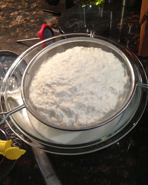 An average batch of not-so-average Ricotta cheese.