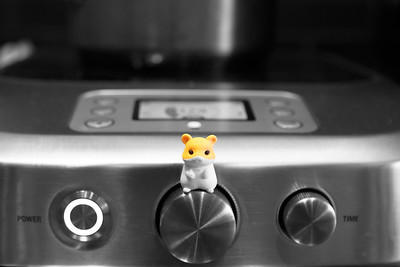 Kitchen Critters helping with cooking at Nomad.PDX