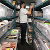 Volunteers put away donated food at the PACH Outreach food pantry in Pepperell. Cory Dows of Pepperell rearranges bins of meat in a very full freezer.  JULIA MALAKIE/LOWELLSUN