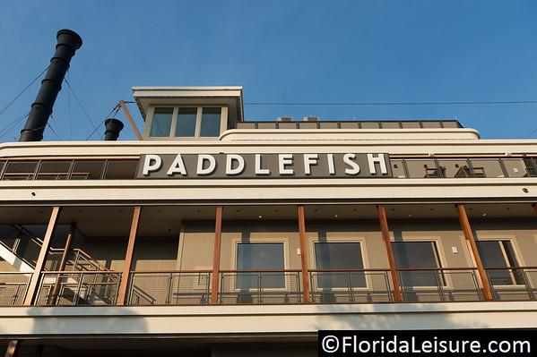Paddlefish 2017