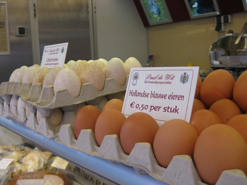 """""""Blue eggs"""" by Paul de Wit from Sint Laureins, poultry specialist, also producer of Calicuth eggs (peacock)"""