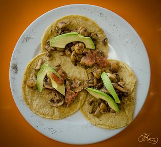Mushroom & Avocado Tacos