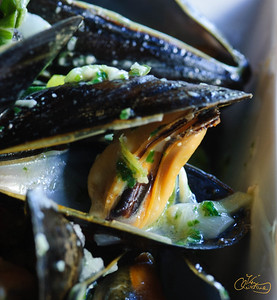 Mussels in Wine Broth