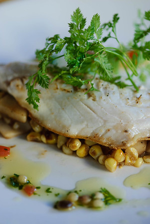 Fish filet w corn salsa (1)