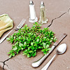 Picnic-friendly purslane