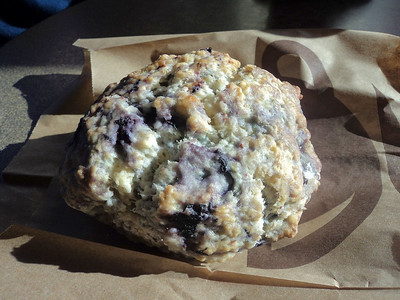 Image result for second cup blueberry scone