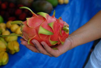 A ripe dragon fruit, Hylocereus undatus.