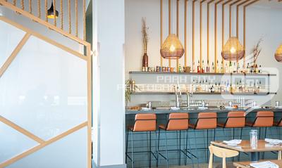 Twisted Fern Interior-08458