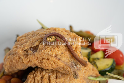 Twisted Fern Chicken fried portabella jpg-08266