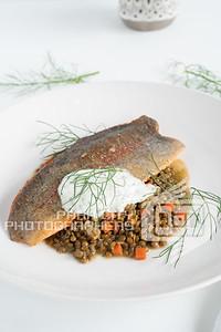 Twisted Fern Trout-08373