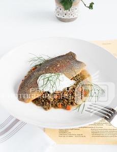 Twisted Fern Trout-08392