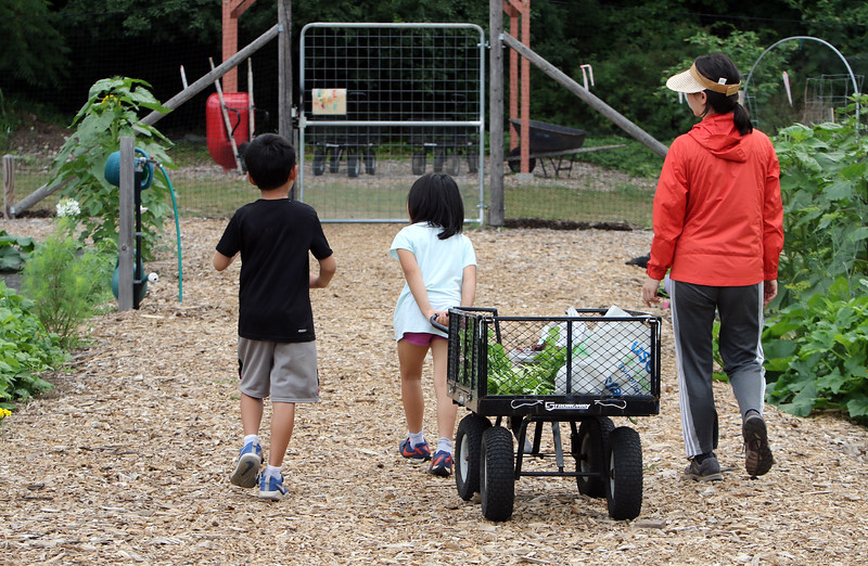 Mihee Park of Westford and her son Dohyun Yoon, 9, and daughter Dana Yoon, 6, head out after working in their plot at the Westford Community Garden. (SUN/Julia Malakie)