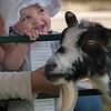 Lorielei Clark, 1, of Westminster, enjoys patting a goat at the Wachusett Mountain Farm Fresh Festival. SENTINEL&ENTERPRISE/ Jim Marabello