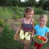 Westford Community Gardens. Maria Kasharina, 9, of Westford, with butternut squash, and her sister ANya, 7, with an assortment including tomatoes, peppers, basil and dill, that they'd picked at their family's plot at Westford Community Gardens. (SUN/Julia Malakie)