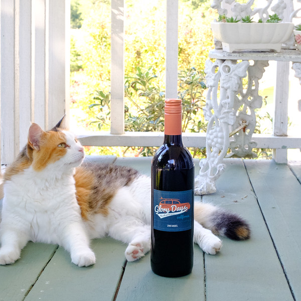 Glory Days Zinfandel with Kitty cat