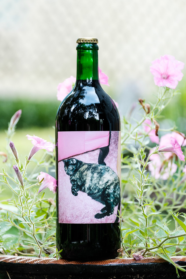Wine bottle with cat on it it front of petunias