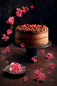 Dark chocolate cake with sour cherries