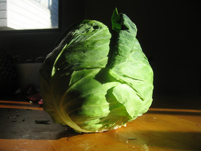Cabbage centerfold, page 1