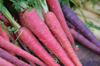 Pink Carrots