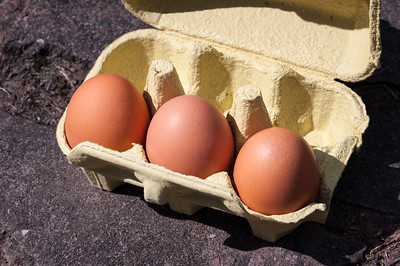 Eggs in box 2