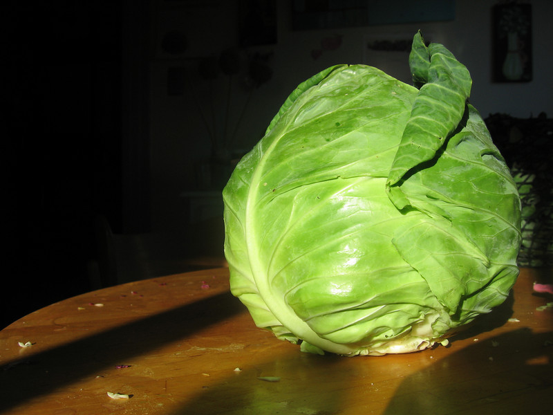 Cabbage centerfold, page 3