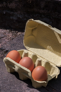 Eggs in box 4