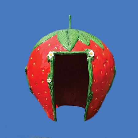 Strawberry Hut, 8'H #6175