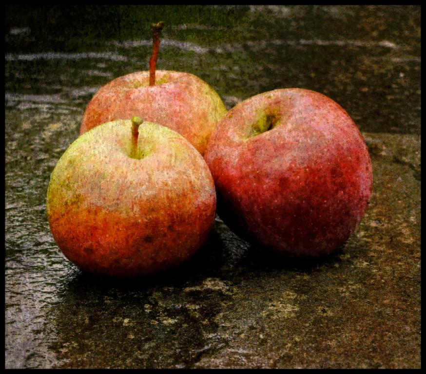 Apples On A Rainy Day