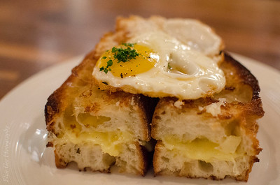 Grilled Cheese Sandwich with a Fried Egg