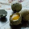 healthy quail eggs