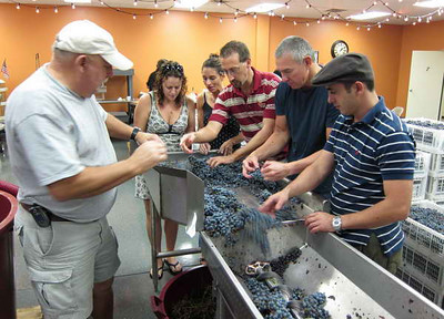 Wine Making in Naples Florida