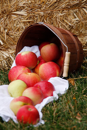 Apples And Brown Basket