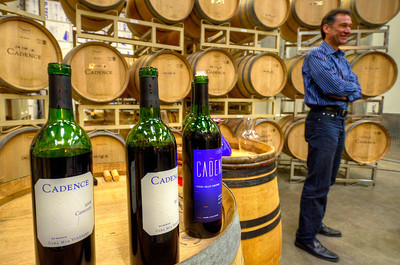 Blockbuster wines: The Cara Mia Vineyard 2008 Camerata (the 'left bank' style) with 2008 Bel Canto (the 'right bank' style) and two 98 'library' wines. Ben also served the 2008 Ciel du Cheval, 2008 Tapteil and 2009 Coda.