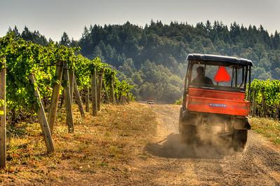 Blair Trathen, winemaker, motors around the vineyards to check on progress.