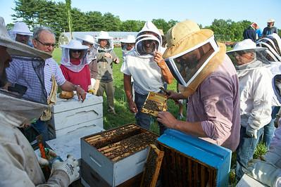 6 11 19_Foodographer_HoneyBees_JBP05