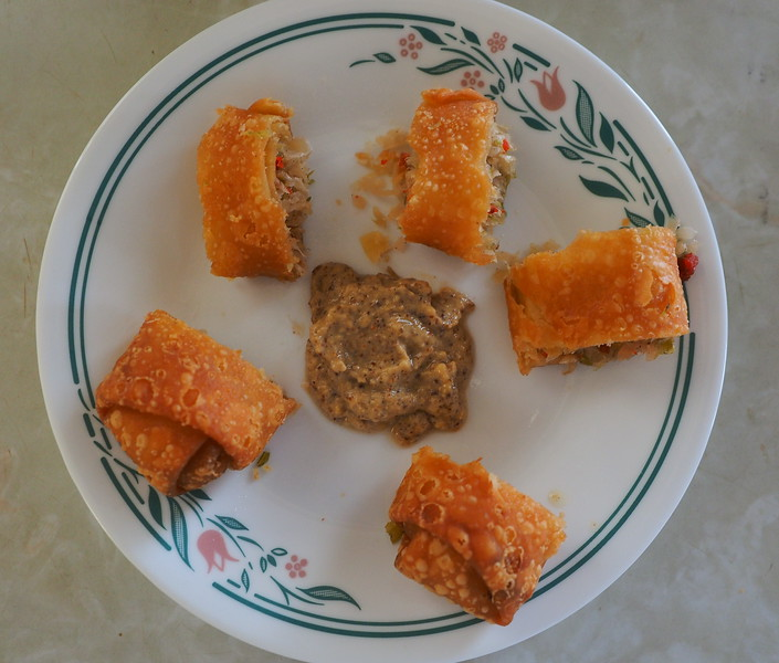 2017-06-12_P6120004_Egg roll snack,Clwtr