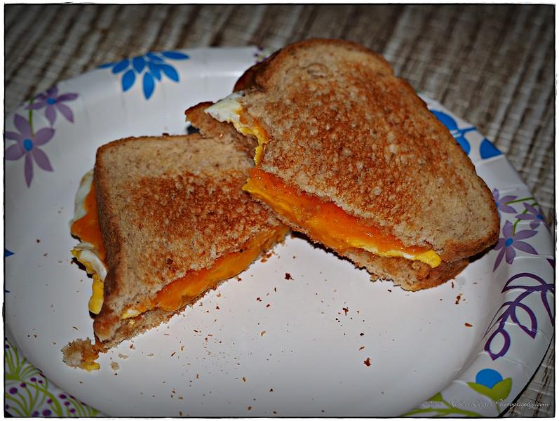 2016-07-25_P7250007_ Egg sandwich,Clearwater,Fl