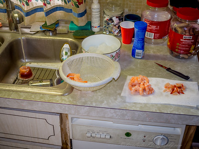 2019-02-20_e-pl5,25mm,ap,f1 8+f4 0   shrimp prep,tip by,by_P2200077