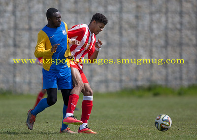 COMMUNITY CUP 024