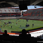 The Florida Gators football camp on June 6th, 2015. Gator Country photo by Kassidy Hill.
