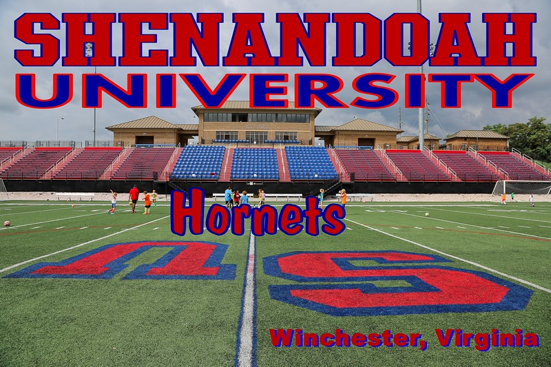 Shenandoah University is located in Winchester, Virginia, and home to the Shenandoah University Hornets (July 24, 2013)