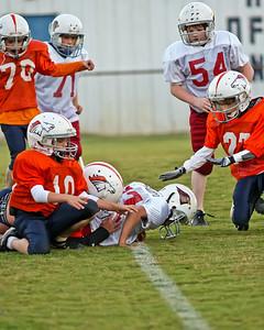 2009 10 20_CardinalsVSBroncos_0092_edited-1