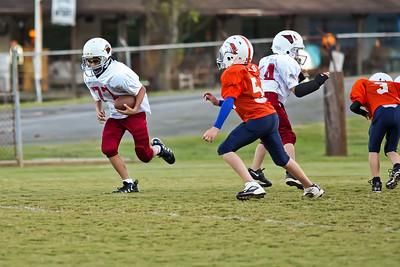 2009 10 20_CardinalsVSBroncos_0052_edited-1